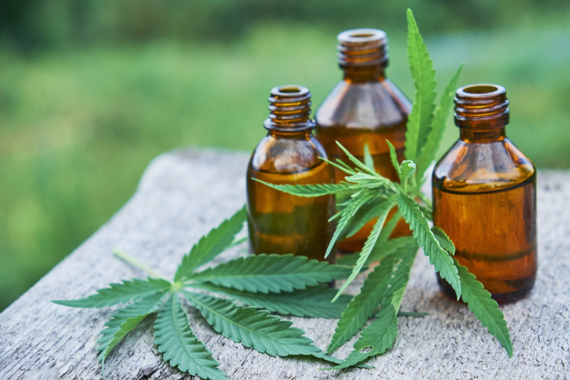 CBD Oil Price 101: What Goes into the Cost of CBD?